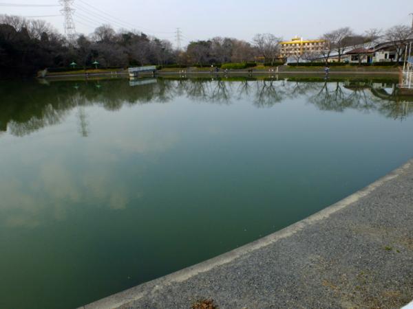 東谷山フルーツパークの池