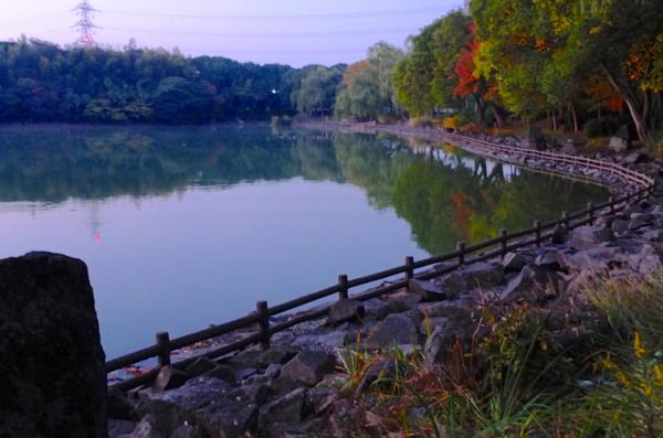 池 公園 山田