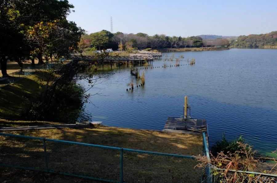 長成池公園