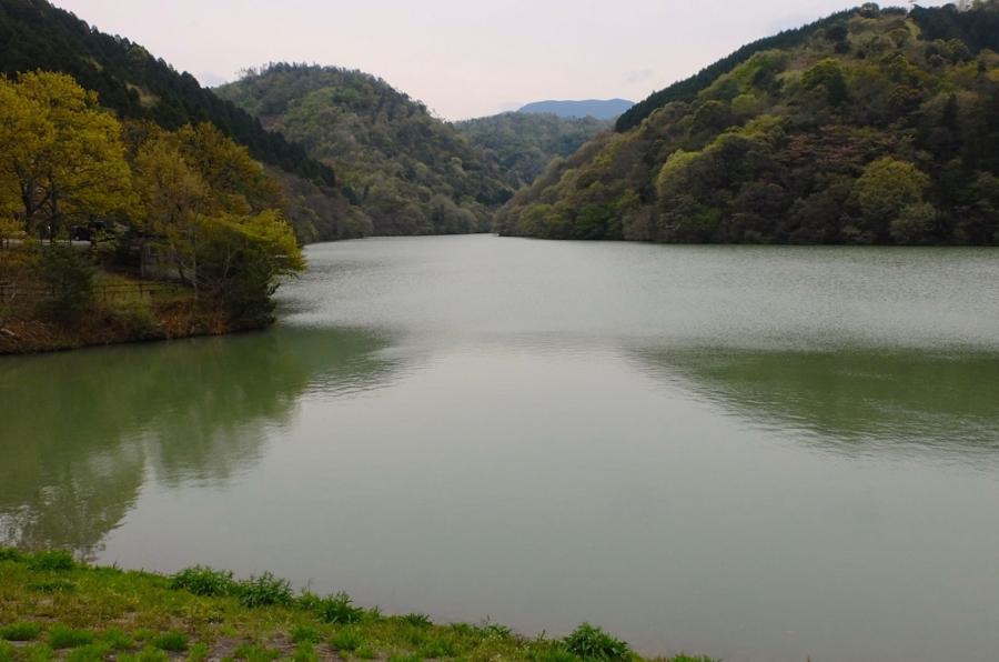 えひめ森林公園